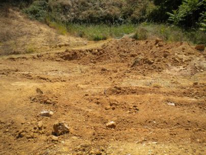 The Anatomy of Dirt